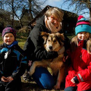 Koirien turvakoti Virossa.
