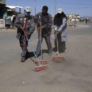Katua harjataan Jemenin pääkaupungissa Saanassa.