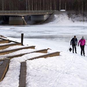 Hiihtäjiä Rovaniemellä Ounasjoen rannalla.