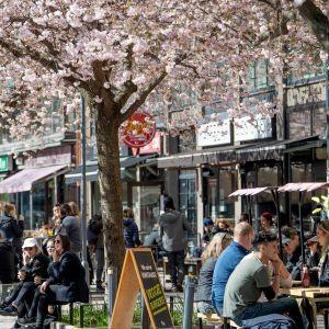 Ihmiset istuvat kahvilan terassilla Tukholmassa.