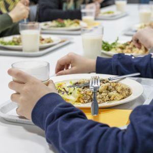 Makaronilaatikkoa lautasella kouluruokailussa.