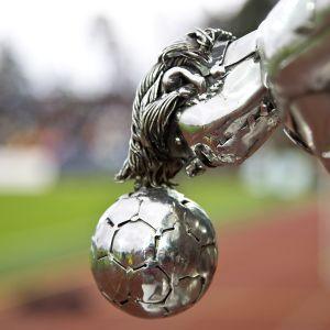 Jalkapallon Veikkausliigan pokaali
