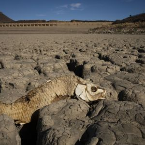 Kuivunut pato Etelä-Afrikassa.