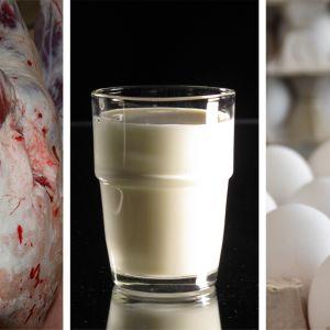 Kuvassa on eläimen ruho, maitolasi ja kananmunia.