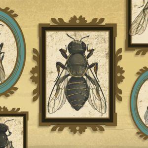 Animaatio mehiläisistä ja ampiaisista erilaisissa kehyksissä