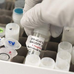 Koronavirusrokotetutkimukseen liittyviä koeputkia laboratoriossa Yhdysvaltain Gaithersburgissa.