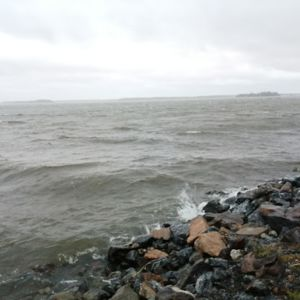 Meri Merenkurkku Vaasa