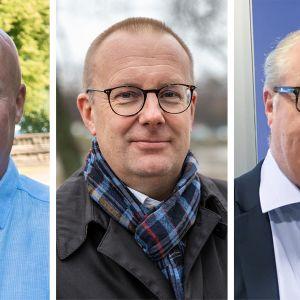 Antti Palola, Jarkko Eloranta, Sture Fjäder