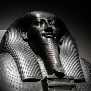 Egypti, Amos Rex