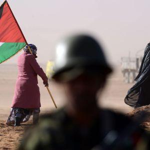 Nainen pitää Polisarion lippua kiistetyllä alueella länsi Saharassa