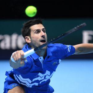 Novak Djokovic kurottaa palloon.
