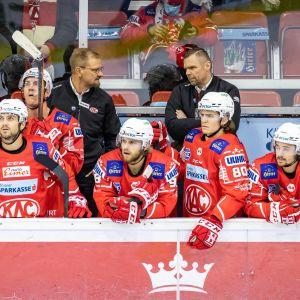 Petri Matikainen  ja Juha Vuori Klagenfurter AC:n penkin takana.