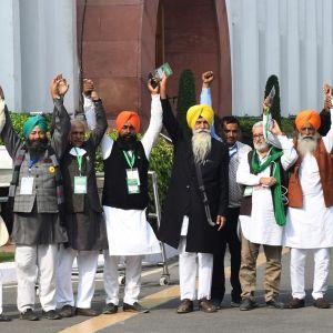Kuvassa on kymmenen miestä, jotka ovat nostaneet kätensä ylös.