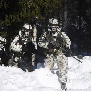 Suomalaisia varusmiehiä, joilla on osuman rekisteröivä prisma otsapannassa, Northern Wind 2019 -sotaharjoituksessa Mjöträskissä Ruotsissa 22. maaliskuuta 2019.