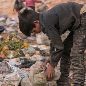 Syyrialaispoika kerää syötävää