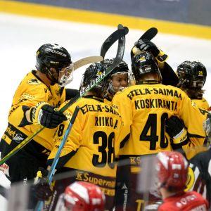 SaiPa juhlii Jarno Koskirannan 1-3 maalia ottelussa HIFK:ta vastaan.