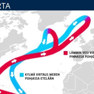 Grafiikassa esitetty Golfvirran lämmin virtaus meren pinnassa pohjoiseen ja kylmä virtaus  meren pohjassa etelään.