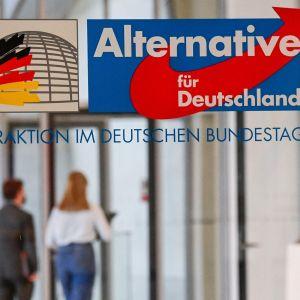 Saksan AfD puolueen logo.