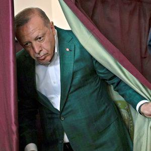 Turkin presidentti Recep Tayyip Erdoğan. Kuva maaliskuulta 2019, jolloin Erdoğan äänesti paikallisvaaleissa.