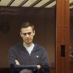 Aleksei Navalnyi seisoo kädet ristissä oikeussalin lasikopissa.