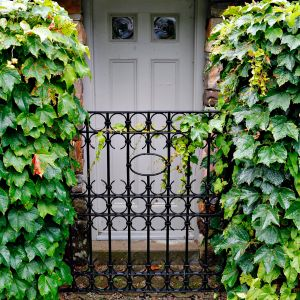 Viiniköynnösaidan välissä on rautainen portti, jonka takana on valkoinen ulko-ovi Yhdysvaltain Mainessa.