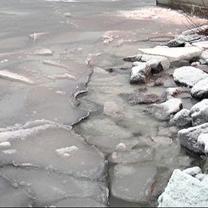 Ohutta jääpeitettä rannassa.