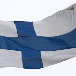 Suomen lippu liehuu tangossa.