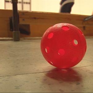 Punainen sählypallo