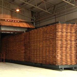 Valmista lämpökäsiteltyä puutavaraa Uimaharjun sahalla.