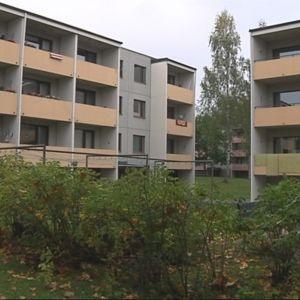 Vuokrayhtiö Mikalon kerrostaloja Mikkelin Peitsarissa.