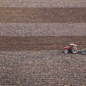 Traktori kyntää peltoa.