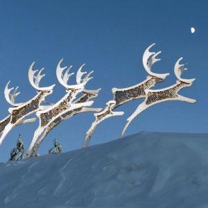 Porot -patsas Rovaniemen lentoasemalla