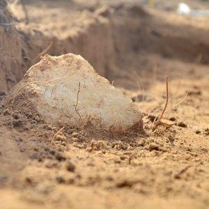 Maasta pilkistää kvartsi, josta on isketty palasia pieniin työkaluihin.