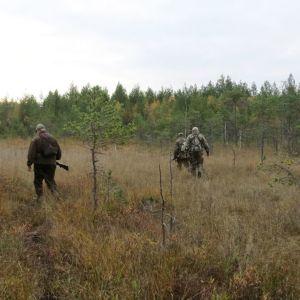 Metsästäjiä maastossa.