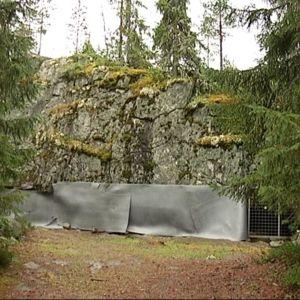 Susiluola sijaitsee Susivuorella Kristiinankaupungissa, mutta Karijoen kunnan mailla.