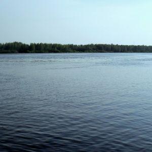 Kolea kesä pitää Pielisjoenkin viileänä.