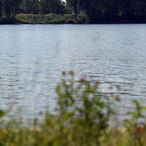 Norilsk Nickelin tehtaan piippu puiden takana Harjavallassa 8. heinäkuuta 2014.
