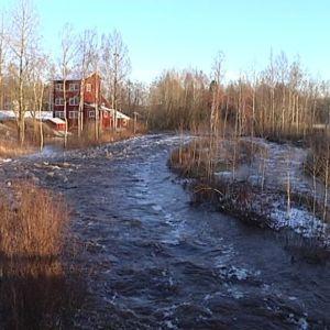 Maalahdenjoen vedenpinta korkealla.