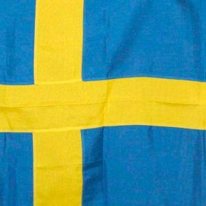 Ruotsin lippu