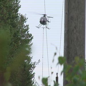 Sähkölinjoja raivataan helikopterilla Uudessakaupungissa