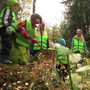 päiväkotiryhmän lapsia metsässä mättäillä