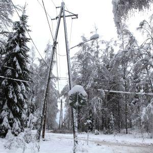 Lumi painoi puita sähkölinjalle Jämsässä.