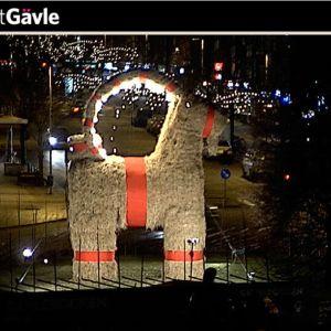 Kuvakaappaus Visit Gävle -sivustolta, jossa Gävlen olkipukkia voi seurata suorana lähetyksenä.