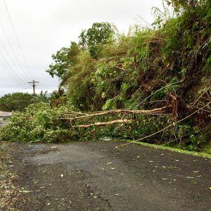 Trooppisen hirmumyrskyn tuhoja Fidzisaarilla 20. helmikuuta.