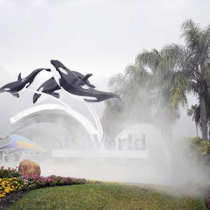 Kolme muovista miekkavalasta ponnistaa ilmaan SeaWorldin mainoksessa palmujen katveessa.