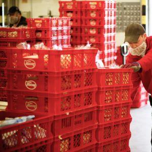 Leipiä lähdössä leipomosto kauppaan