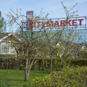 Kupittaan siirtolapuutarha Turussa ja Citymarket.