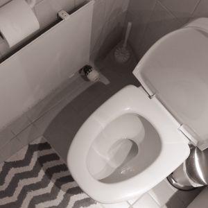 Vessanpönttö vessassa.