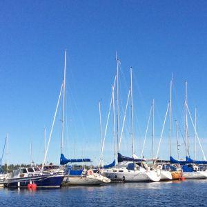 Purjeveneitä satamassa Oulussa.