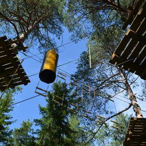 Vaskiluodon metsän puihin on viritetty viisi erilaista kiipeilyrataa.